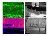 Fuzja termowizor i cyfrowa kamera